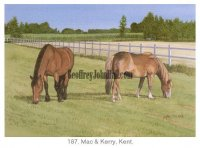 Horses - Mac and Kerry