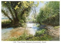 River Darent (In The Summer)