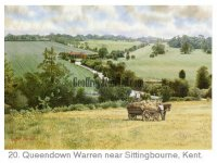 Queensdown Warren