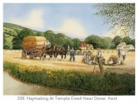 Temple Ewell - Haymaking